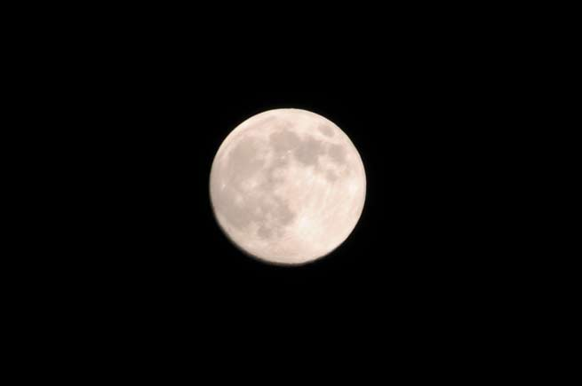 中秋の名月.jpg